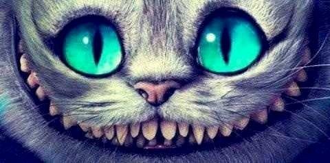 Alice In Wonderland S New Cheshire Cat Via Www Facebook Com Disneylandformisfits Chat De Cheshire Alice Aux Pays Des Merveilles Fond D Ecran Dessin