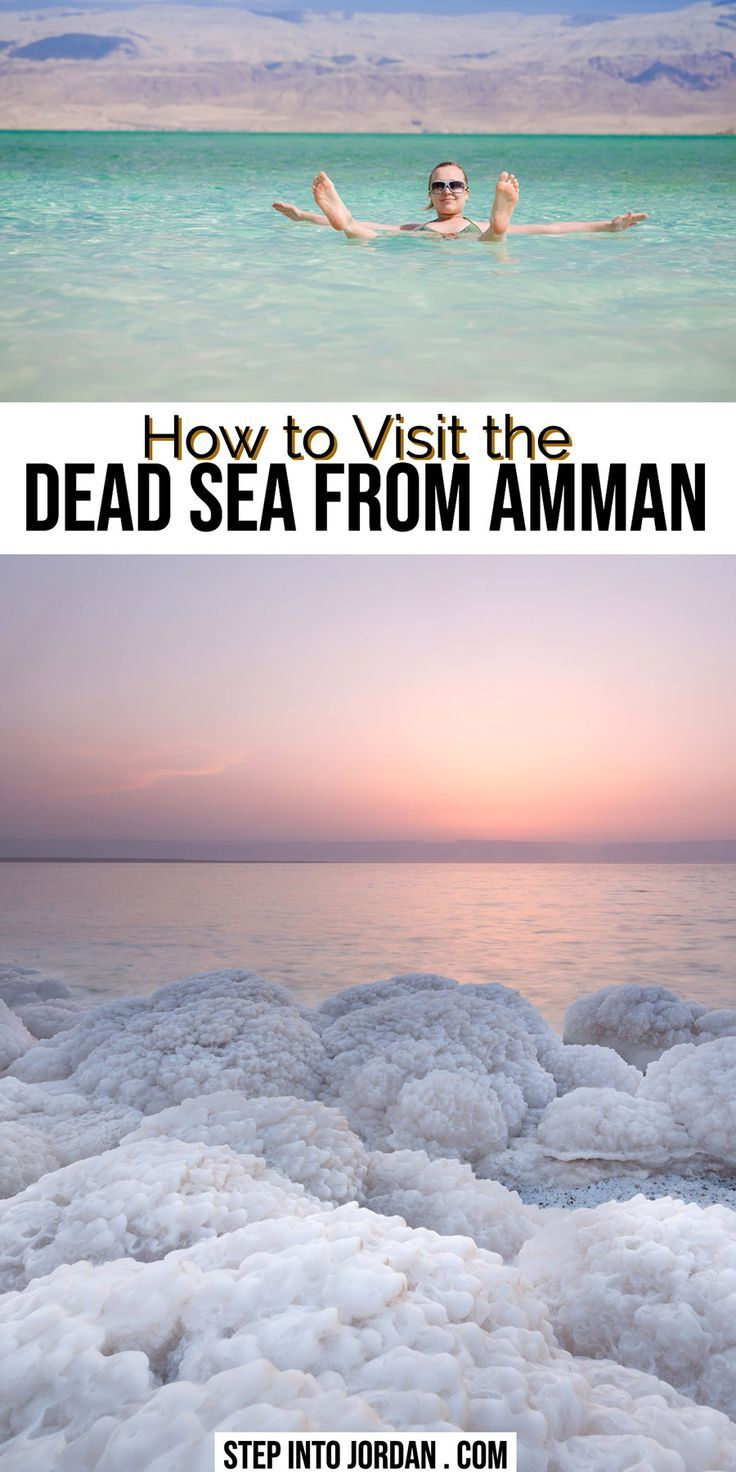 How to Get from Amman to the Dead Sea: Tours, Taxis, Cars, Busses | Step Into Jordan