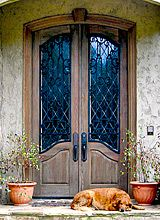Old World Exterior Wood Front Entry Door Dbyd 3163 Fancy