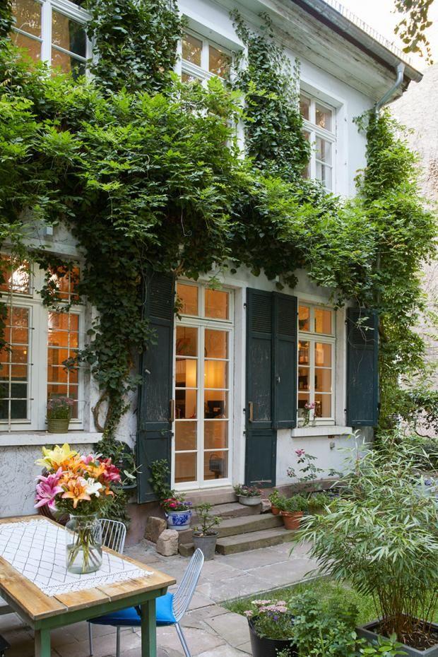 Fassade vom Garten Bild 6