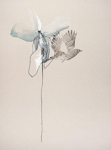 birdpetal