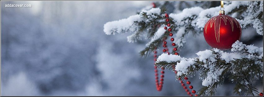 Christmas Tree Facebook Cover