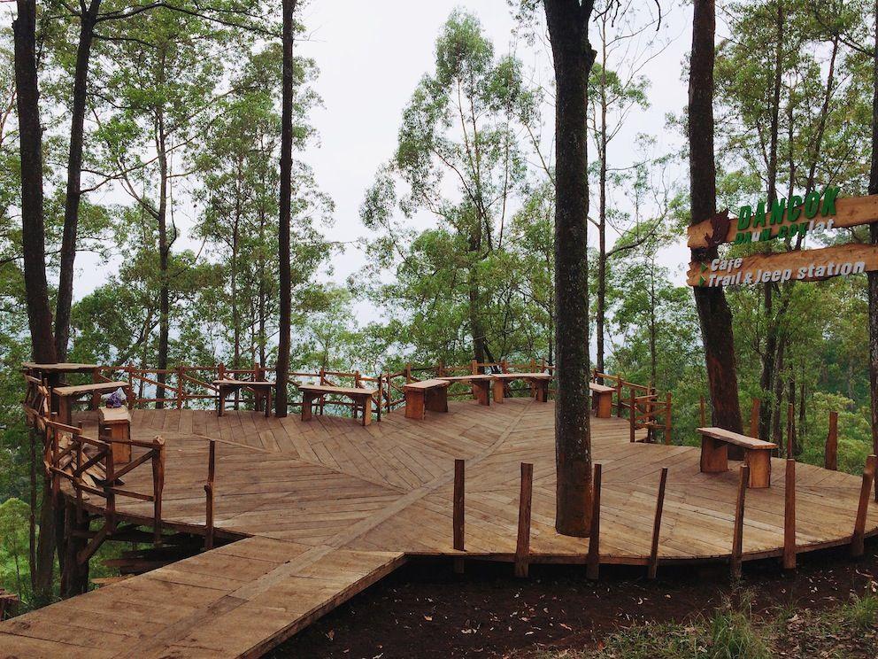 Lokasi Dan Harga Tiket Masuk Cafe Daun Coklat Malang Cafe Kekinian Dengan Nama Trend Dancok Rumah Pohon Malang Daun