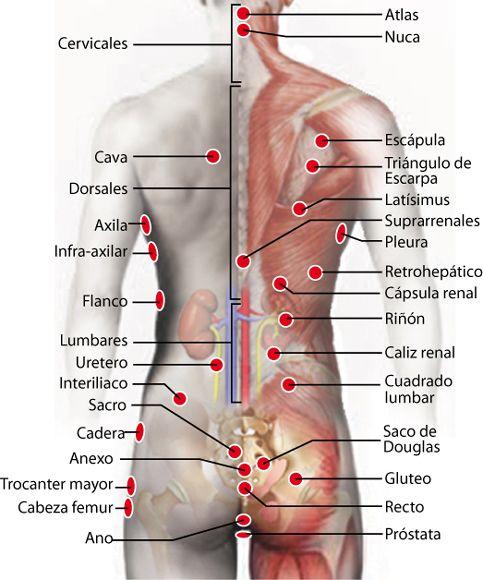 agopuntura vs terapia fisica prostatite cronica