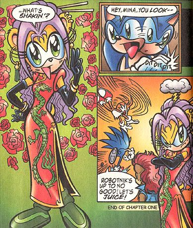 Pin By Brittney Christensen On Human Sonic The Hedgehog And Friends Hedgehog Art Sonic Funny Sonic Heroes