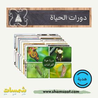 Shamsaat Com شمسات Shamsaat Com Instagram Photos And Videos In 2021 Photo And Video Instagram Photo Instagram