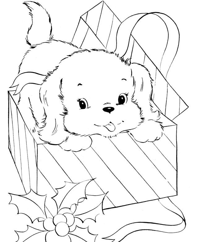 A Small Dog Is Out Of The Box Coloring For Kids Coloring pages