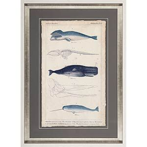 Antique whale and dolphin 30 x 42 Whales - Mercana Furniture and Decor