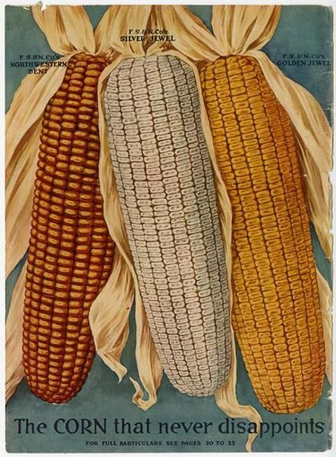 Farmers Would Have Been Wowed By The Corn Depicted Just Inside Front Cover Of