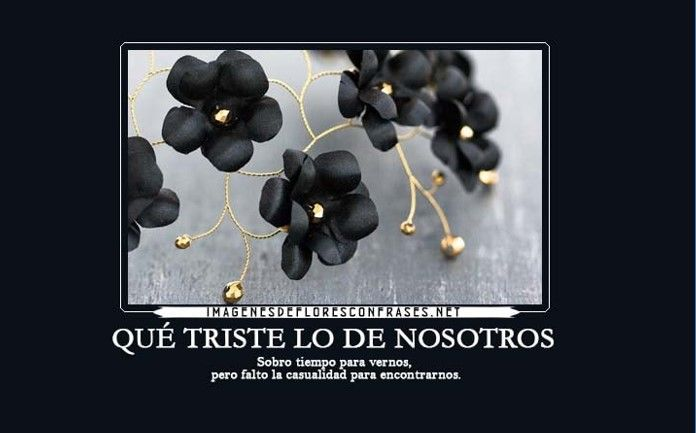Imagenes De Rosas Negras Con Frases Tristes Imagenes De Luto