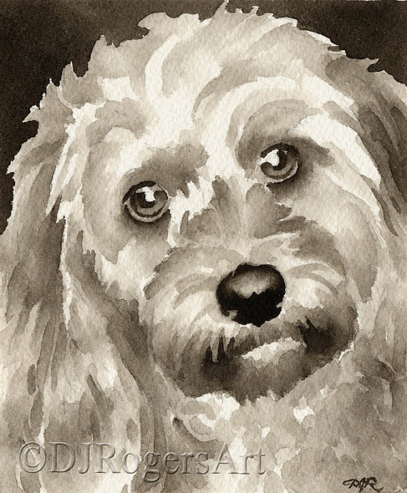 Shih Tzu Art Print Sepia Watercolor Painting by Artist DJR