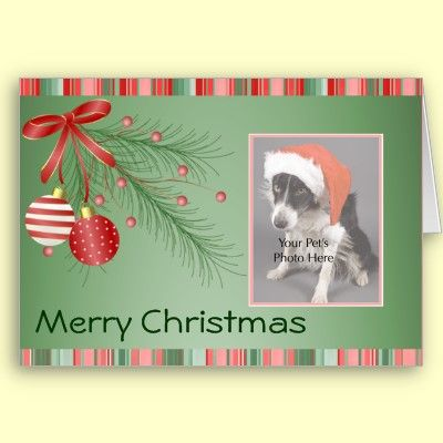 Custom Christmas cards Add your own photo and your own greeting for free! 50% off Cards Use code: CARDS2011CAL