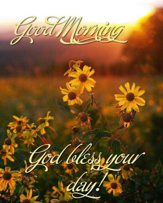 Good Morning God Bless Your Day Religious Flower Photos