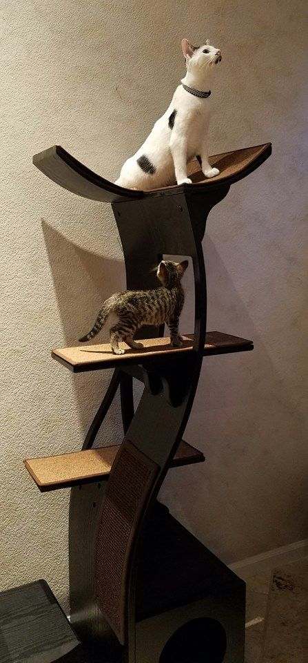 Lotus Cat Tower A Modern Wooden Cat Tree The Refined Feline Modern Cat Tree Luxury Cat Tree Crazy Cats