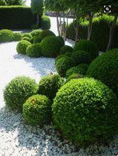 Photo of Faszinierende immergrüne gepflegte Bäume für die Landschaftsgestaltung im Freien 60, # Bäume …