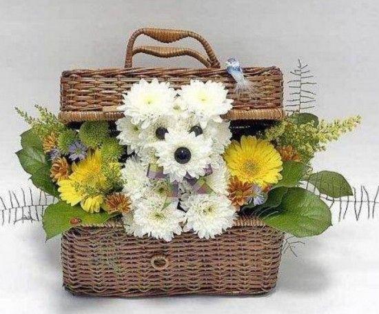 Flower Puppy Arrangements Carnation