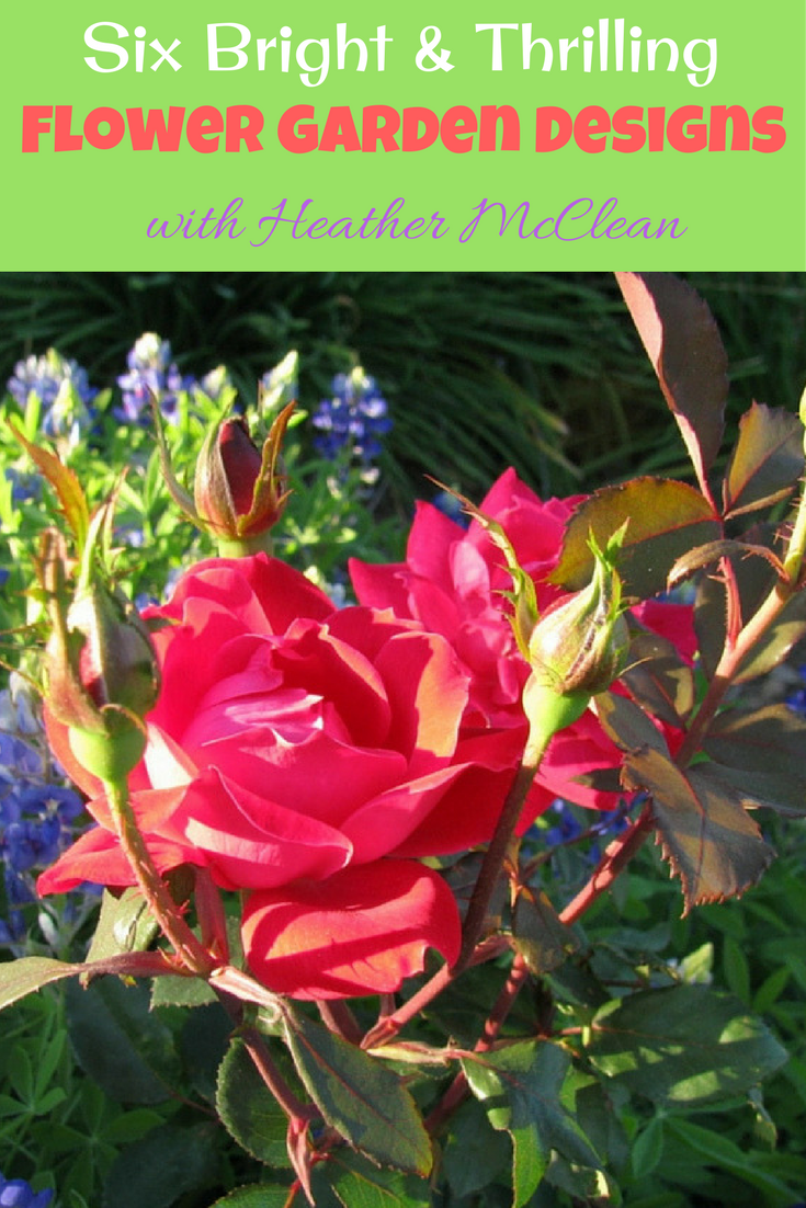 Flower Garden Designs need not be a mystery.  Heather McClean shares 6 bright and thrilling flower garden designs and how to make them a reality.