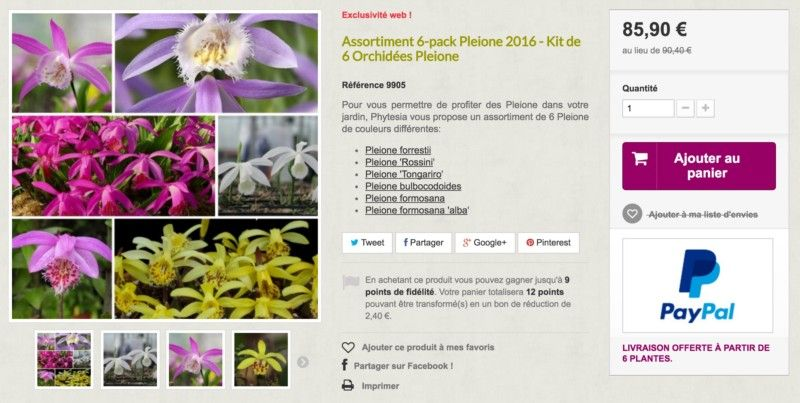 Kit de 6 variétés d'orchidées Pleione... - Phytesia