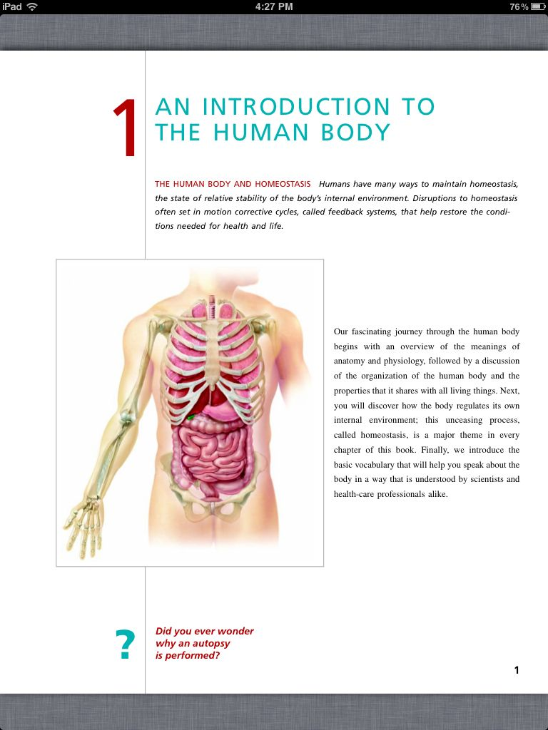 Principles Of Anatomy And Physiology Chapter 1 Intro To The Human