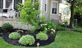 Instant Curb Appeal  Foundation Planting Ideas  ein alter Vorgarten wird überarbeitet  alter