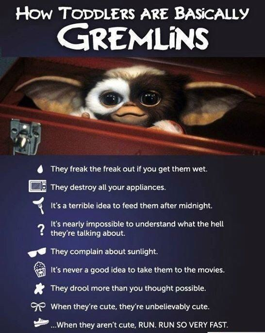 Gremlins and Toddlers