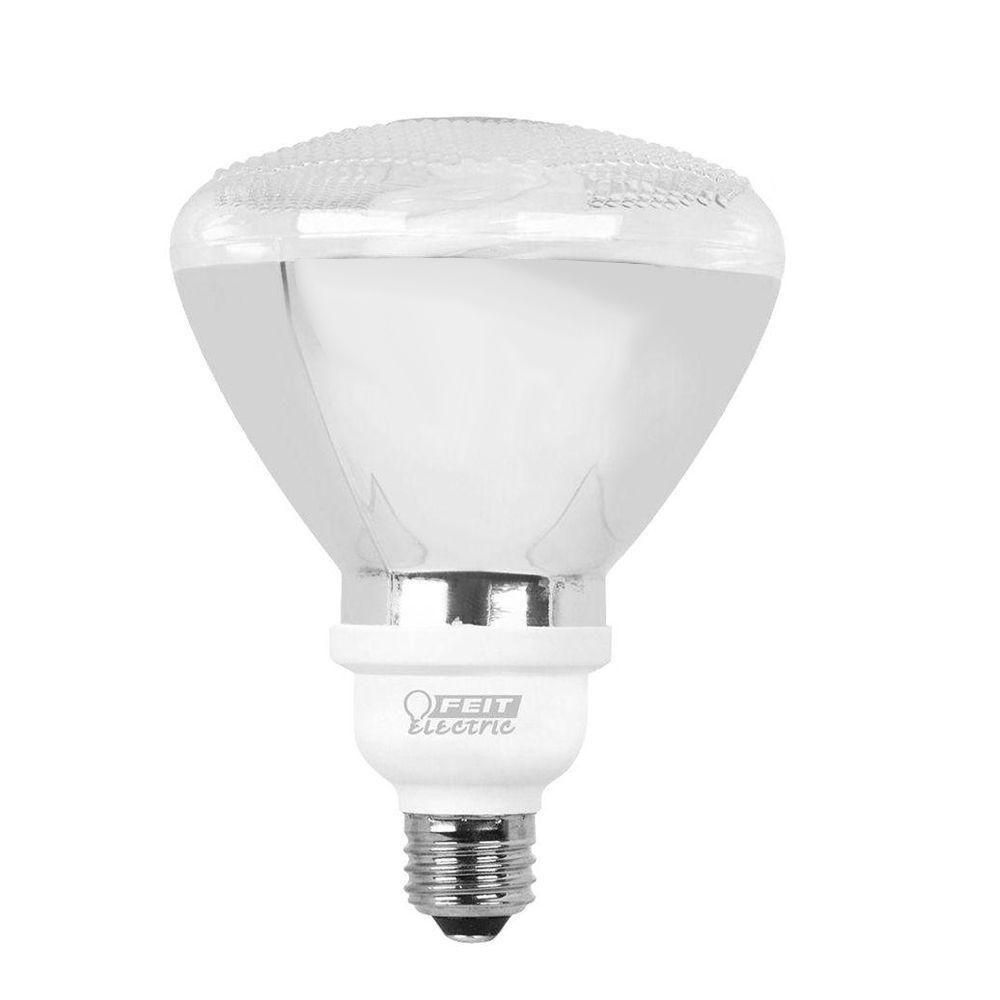 Feit Electric 65 Watt Equivalent Soft White Cfl Flood In Sizing 1000 X Outdoor Compact Fluorescent Light Fixture The Applied Uses O