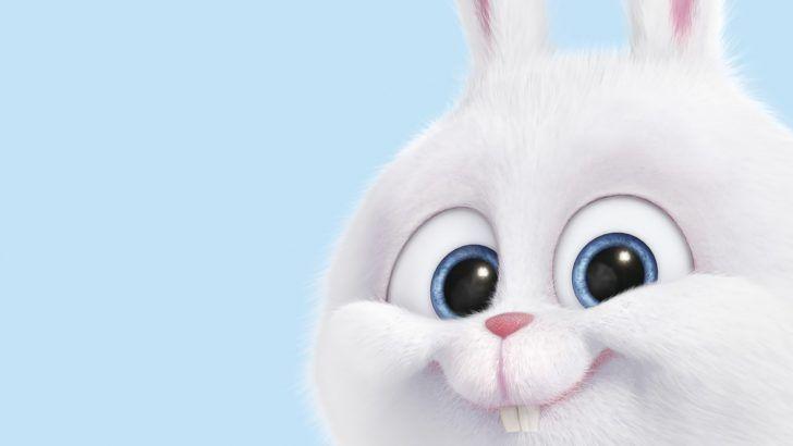 Download Snowball Secret Life of Pets Rabbit Wallpaper 1920x1200