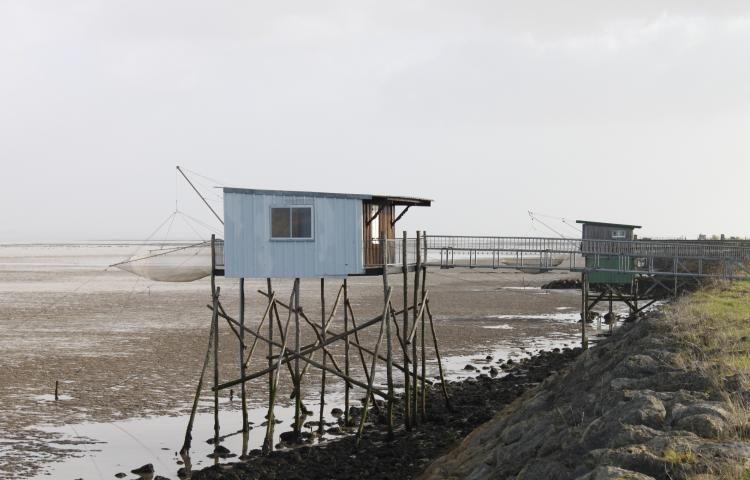 Le parc naturel marin de l'estuaire de la Gironde et de la mer des pertuis pourrait donner lieu à la création de comités géographiques, compétents pour des dossiers locaux. (Photo Loïc Fabrègues)