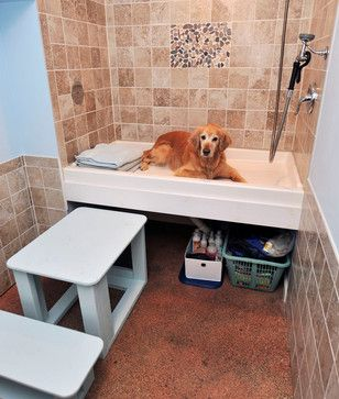 Laundry Room Example Of Dog Wash Will Want Raised Like This With Stairs Stored Below Lot
