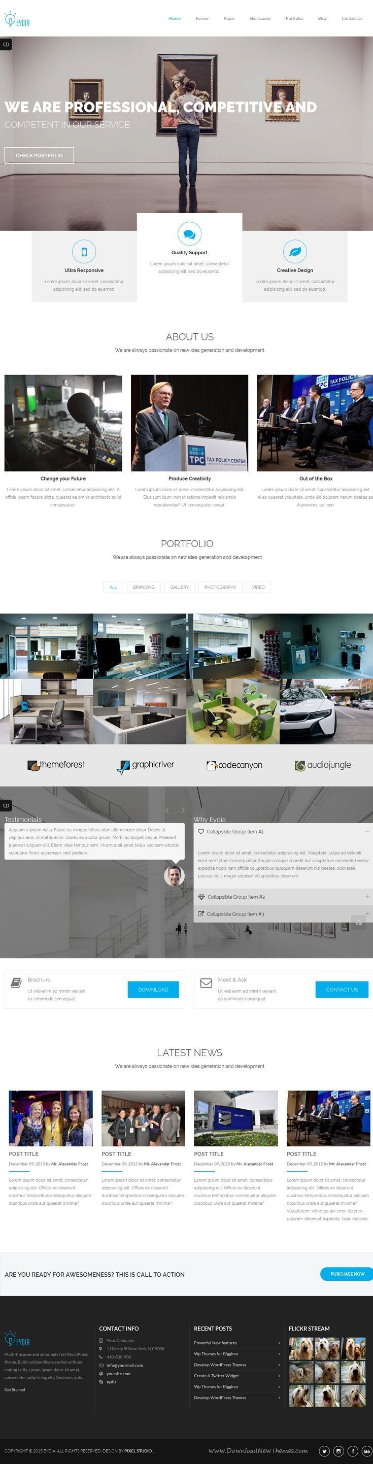 Eydia focus on Multi-page and One page Responsive Marketing ...