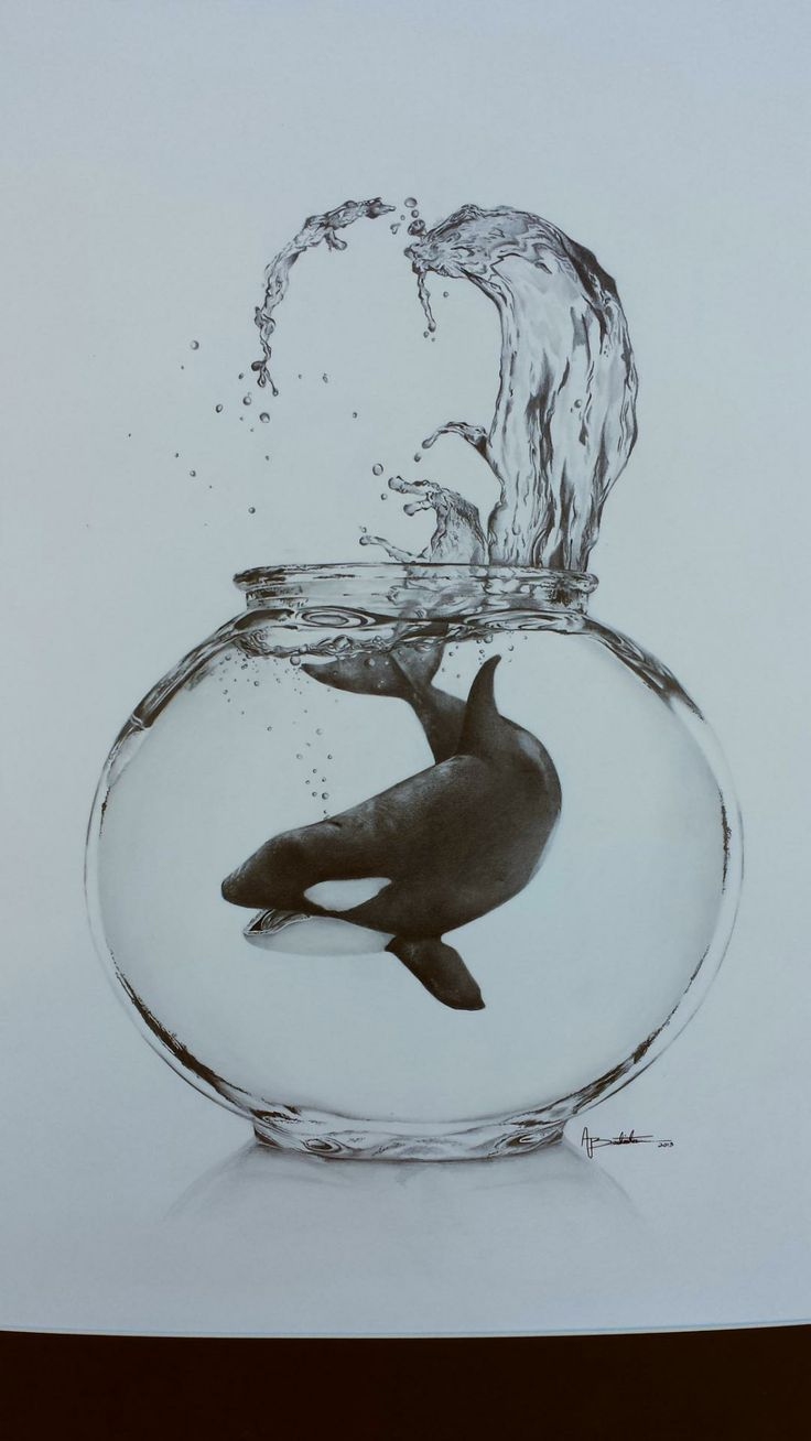 Fish sea life orca whales pinterest fish for How to make creative drawings