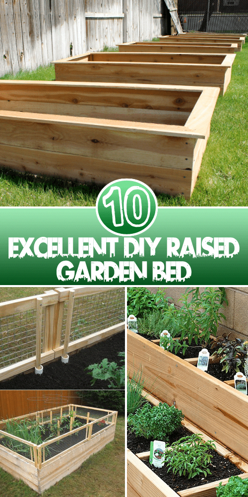 How to Build Raised Vegetable Garden Beds Diy raised
