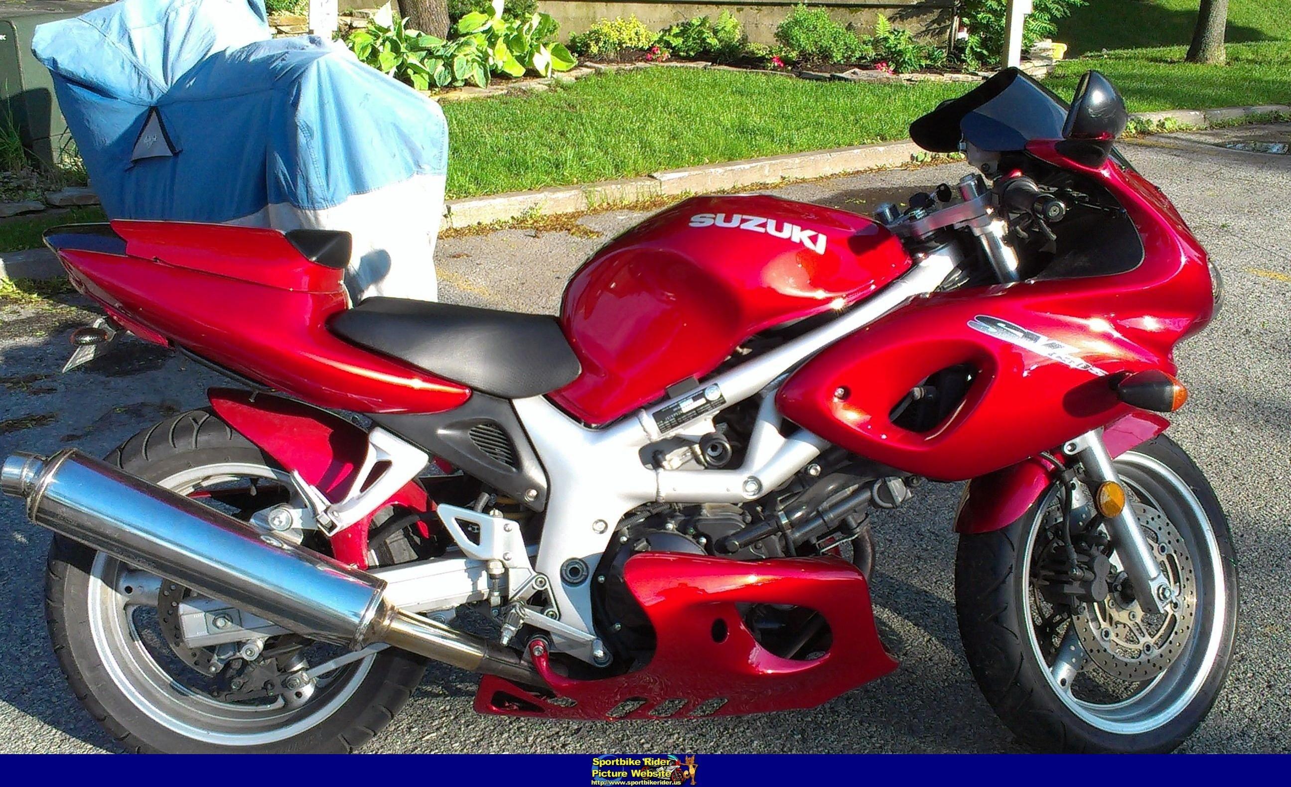 2001 sv 650 suzuki sport bikes pinterest 650 2001 and sv
