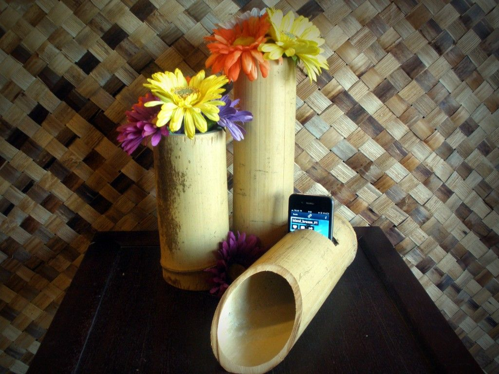 Mobili Bamboo ~ Diy bamboo speaker dock. this is a simple electricity free speaker
