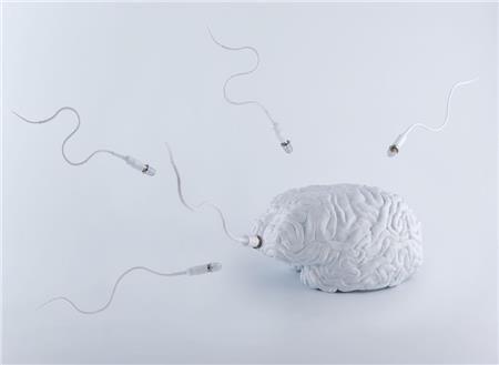 Υπογονιμότητα: Για όλα «φταίει» ο εγκέφαλος! - Imommy