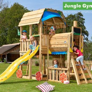Beautiful Backyard Jungle Gym