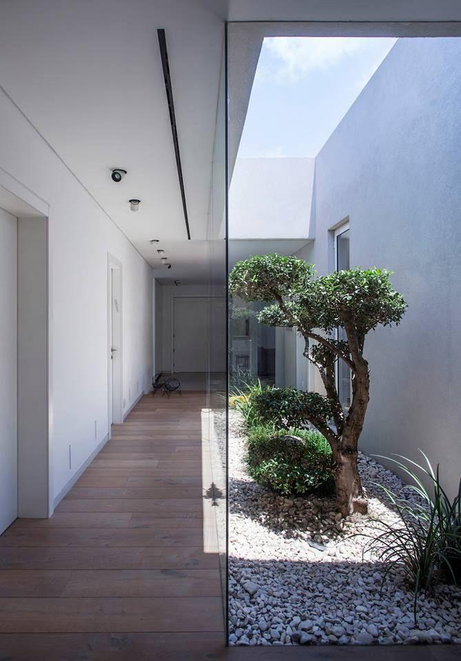 Internal Courtyard Garden Indoor Outdoor