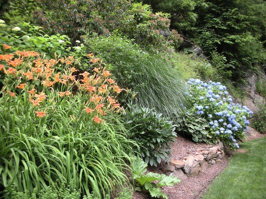 Ground Cover Plants For Slopes Shade How To Attractively Plant A Steep Slope To Reduce Erosion Steep Hill Landscaping Sloped Garden Landscaping A Slope