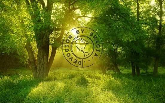 Alumbrando corazones, una luz en tu camino!!!