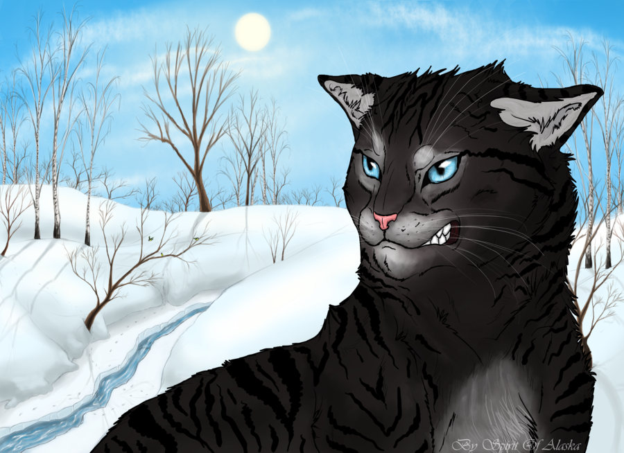 Hawkfrost by on
