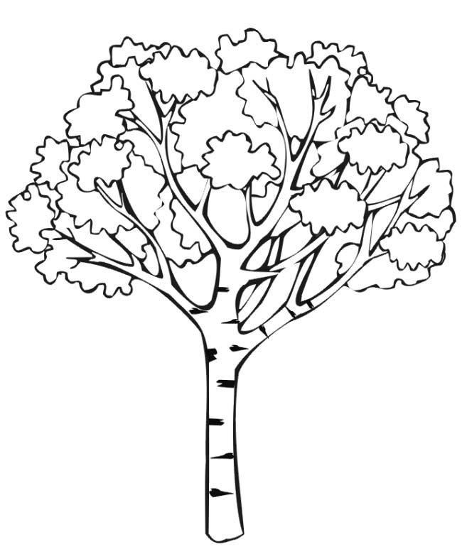 Fall Coloring Page Herbst Ausmalvorlagen Malvorlagen Tiere Baum Vorlage