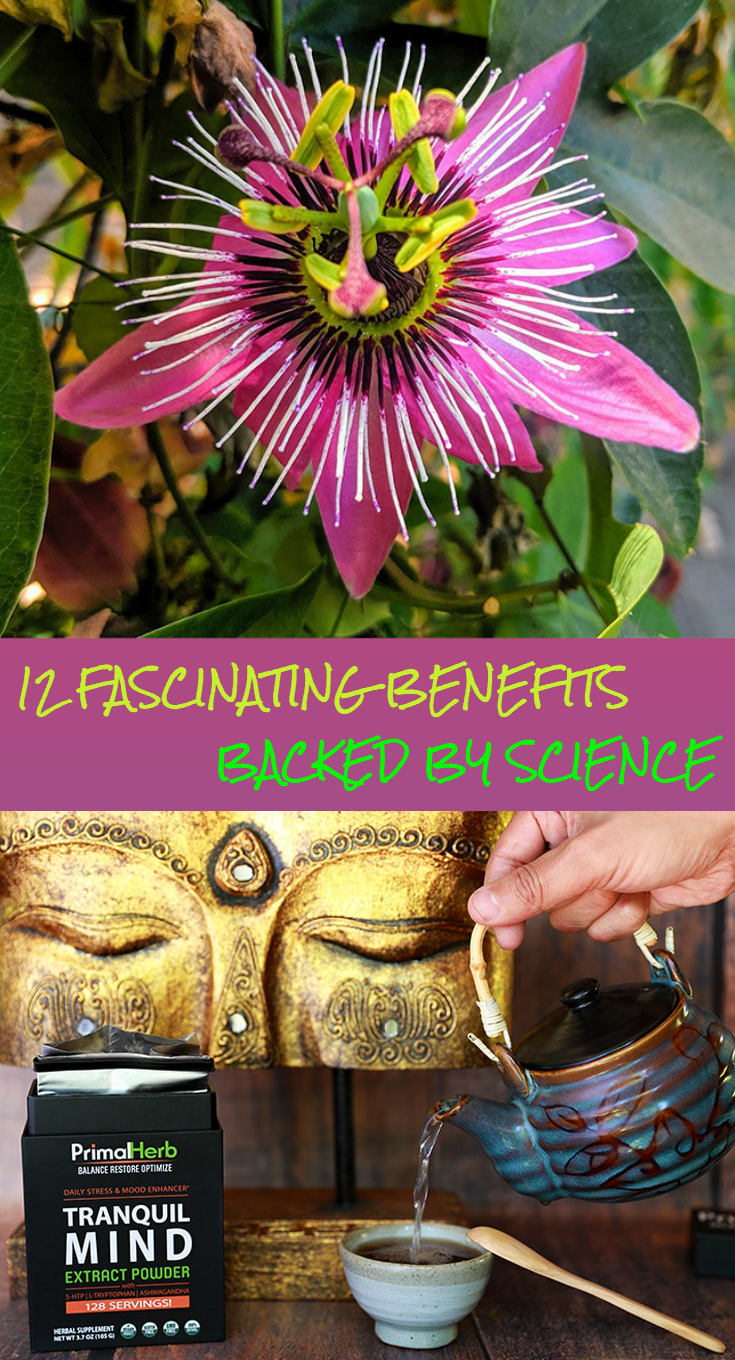 Passionflower 12 Fascinating Benefits Backed By Science Passion Flower Natural Health Tips Herbalism