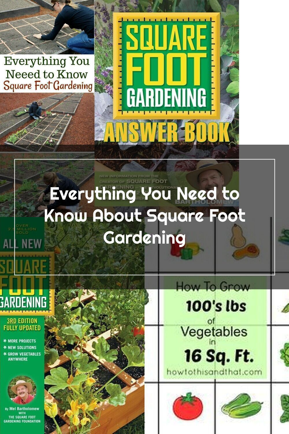 Everything You Need To Know About Square Foot Gardening One Hundred Dollars A Month In 2020 Square Foot Gardening Square Feet Square