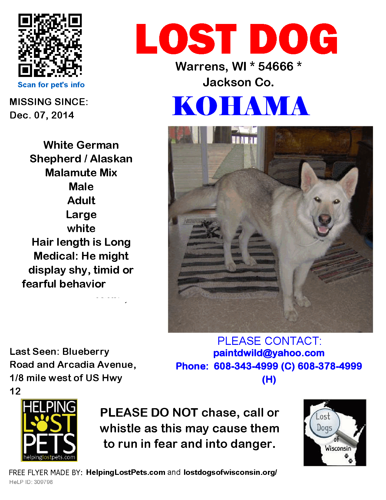 Lost Dogs Of Wisconsin December 9 Lost Dog Kohama 12 07 2014