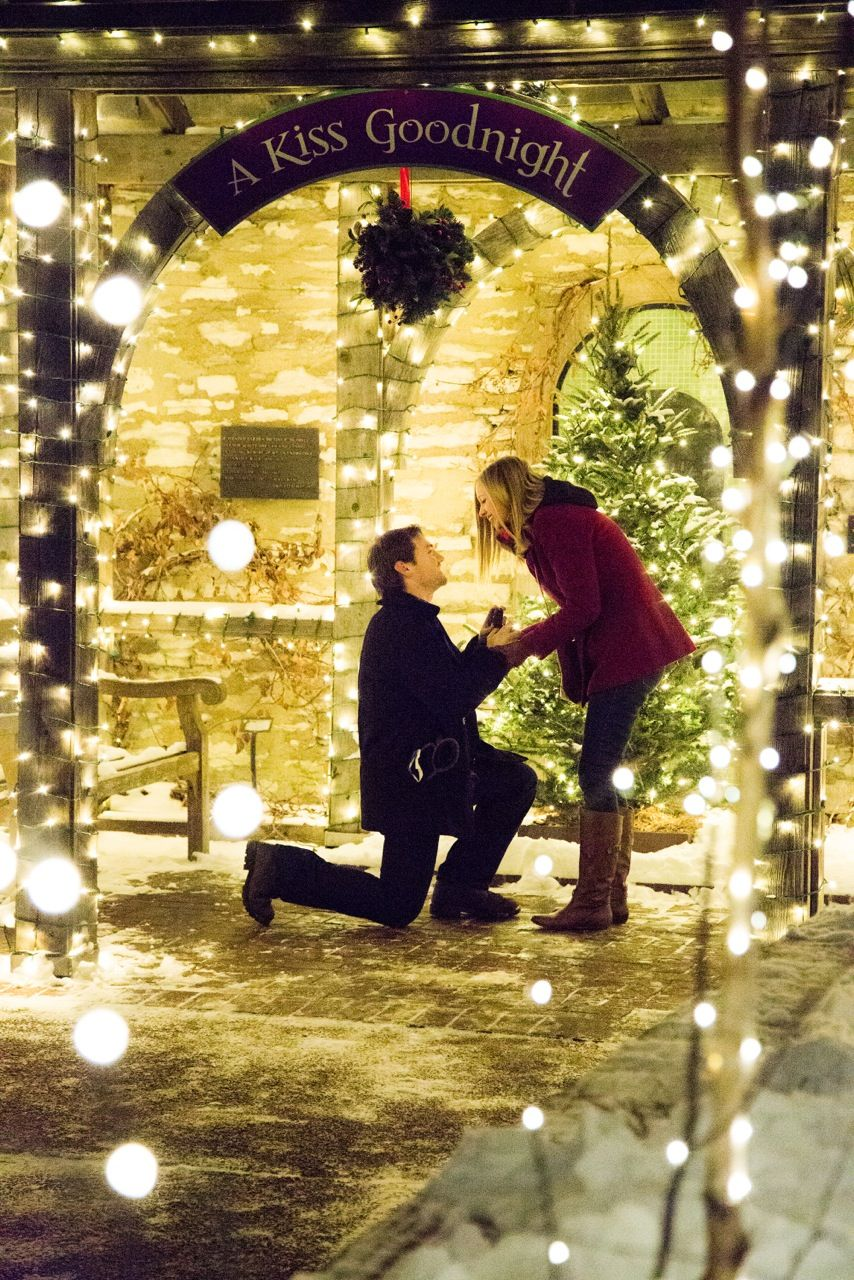 """My proposal at Missouri Botanical Garden's """"Garden Glow"""