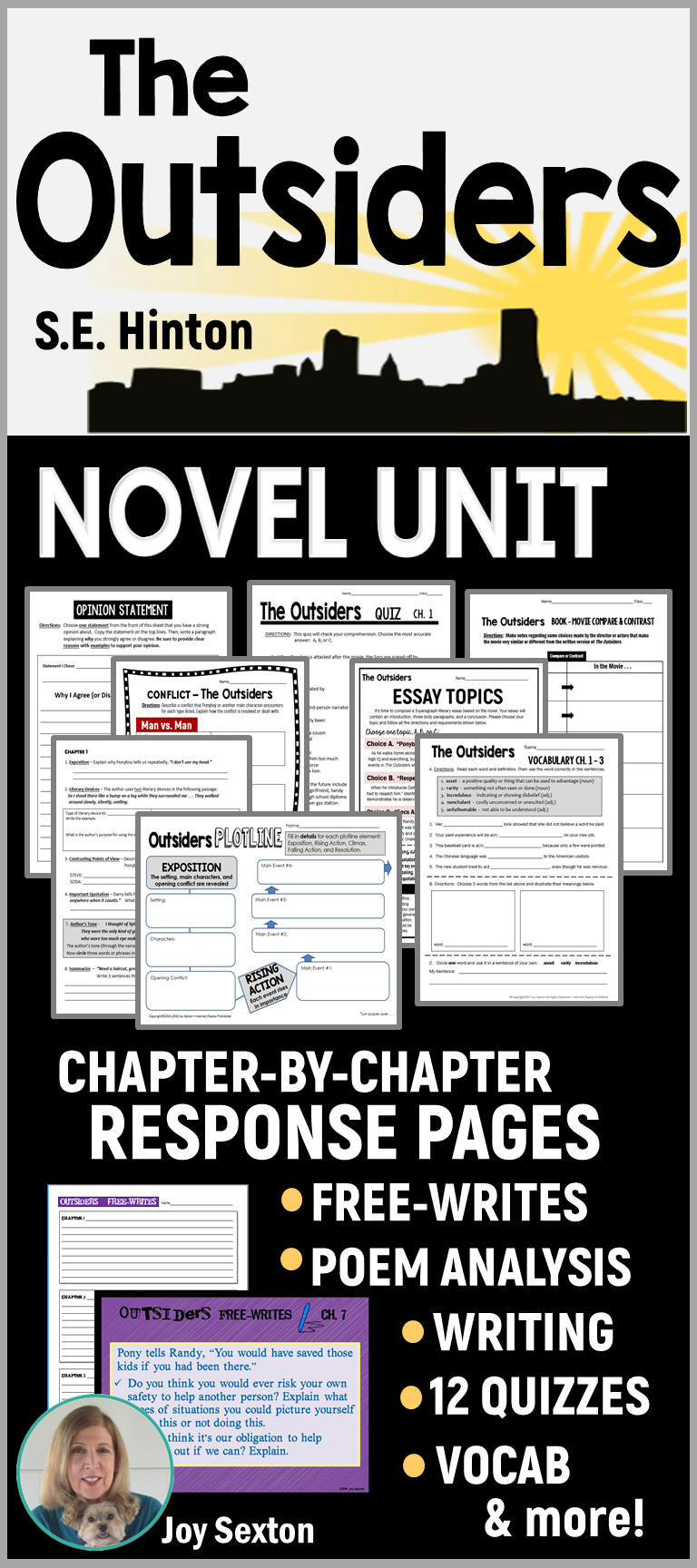 The OUTSIDERS Novel Study Unit