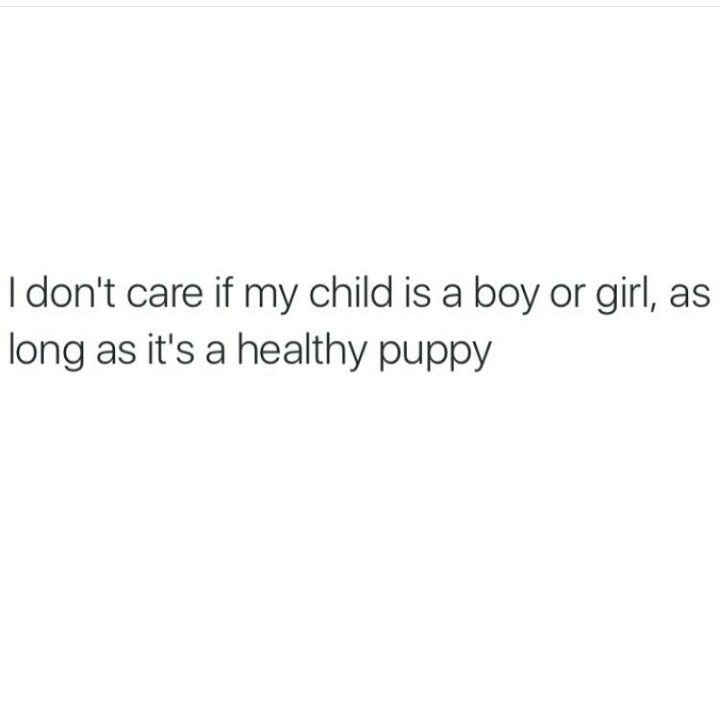 I don't discriminate...I'll raise them all - me adopting puppies