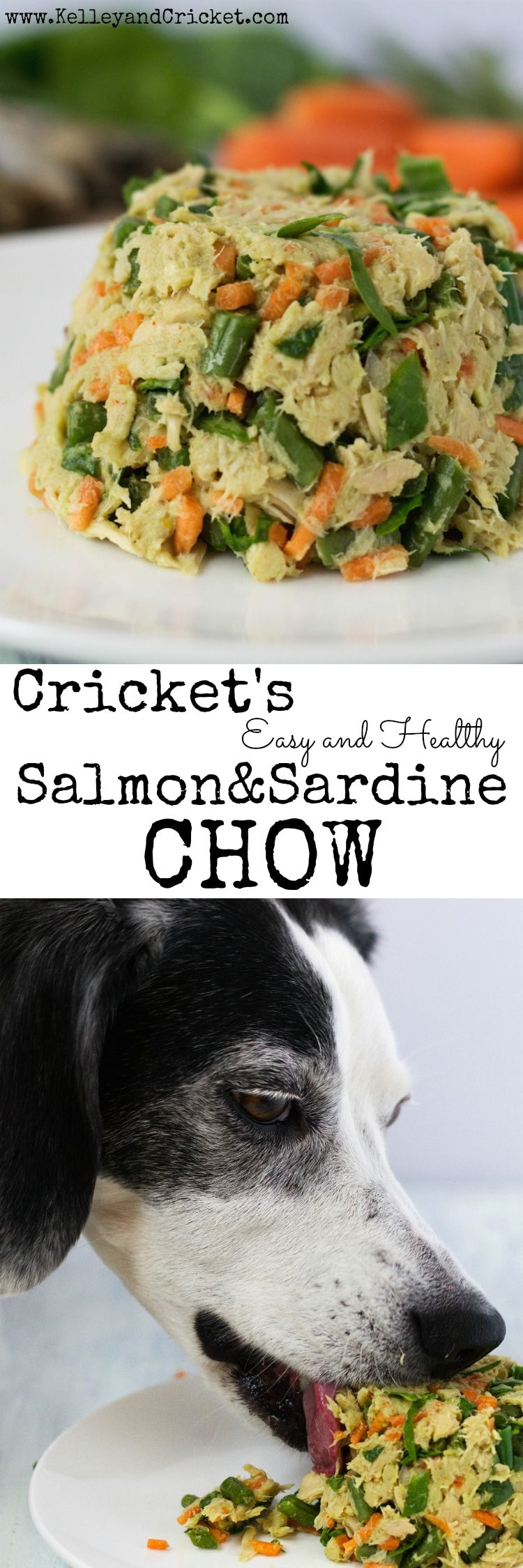 Crickets salmon and sardine chow is an easy no cooking