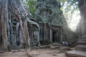 http://blog.travelpickr.com/2013/11/11/amazing-angkor-temples-experience-miss-asia/ #TaProhm #Cambodia #siemreap #cambogia #laracroft