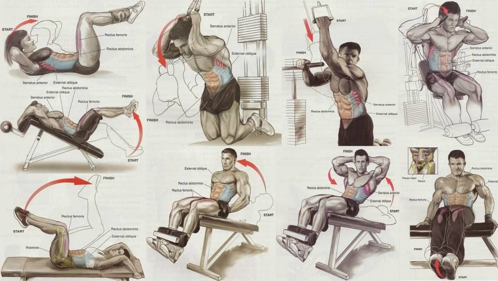 gym workout chart all bodybuilding com training core pinterest